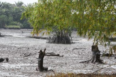 Oil spill at Goi Creek, Nigeria, August 2010